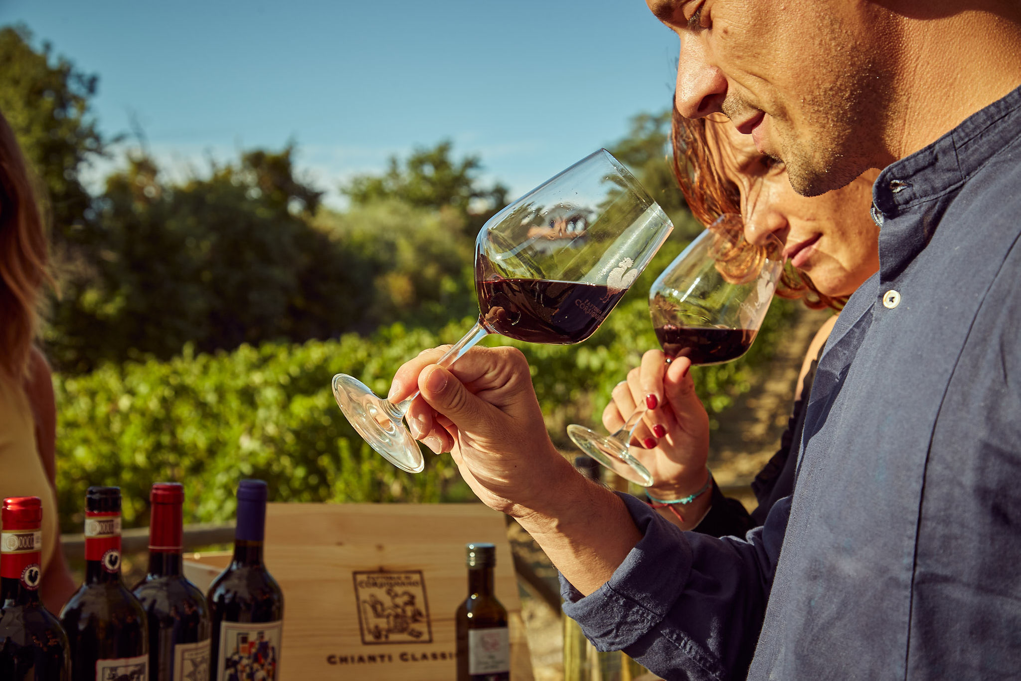 degustazioni vino chianti